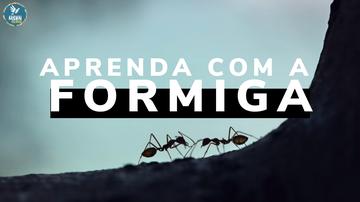 APRENDA COM A FORMIGA