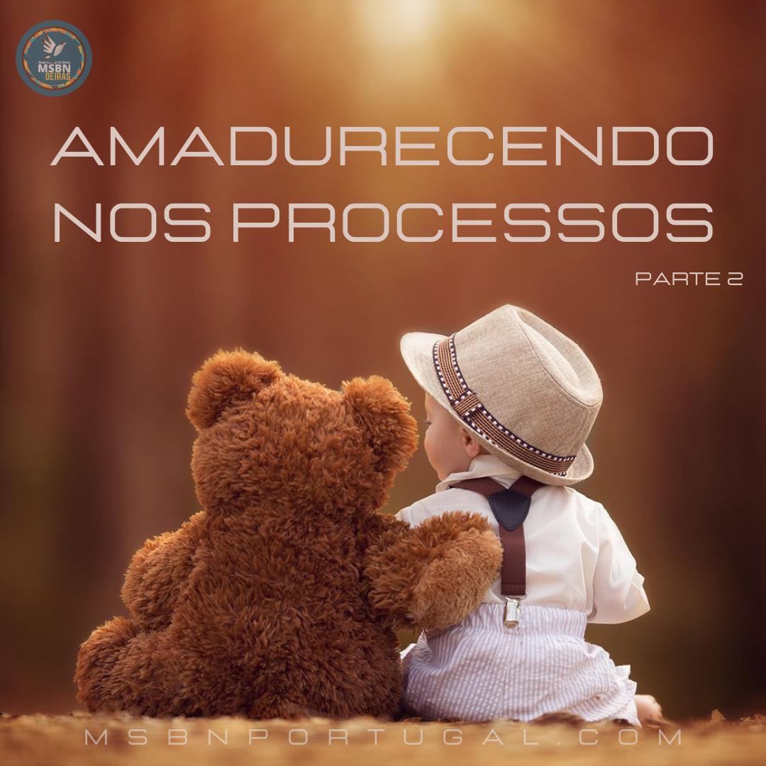 AMADURECENDO OS PROCESSOS   Parte 2   Isabela Ferreira