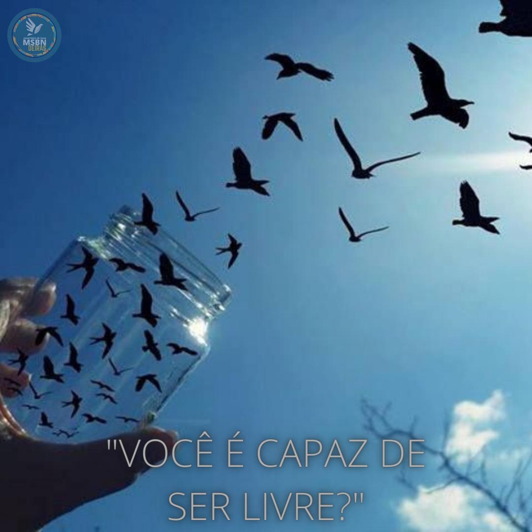 VOCÊ É CAPAZ DE SER LIVRE? | Isabela Ferreira