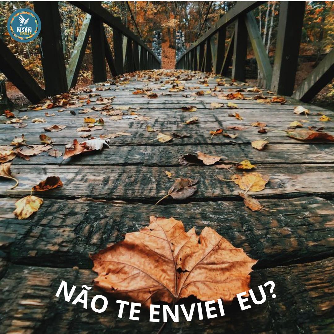 NÃO TE ENVIEI EU? | Antônio Marcos