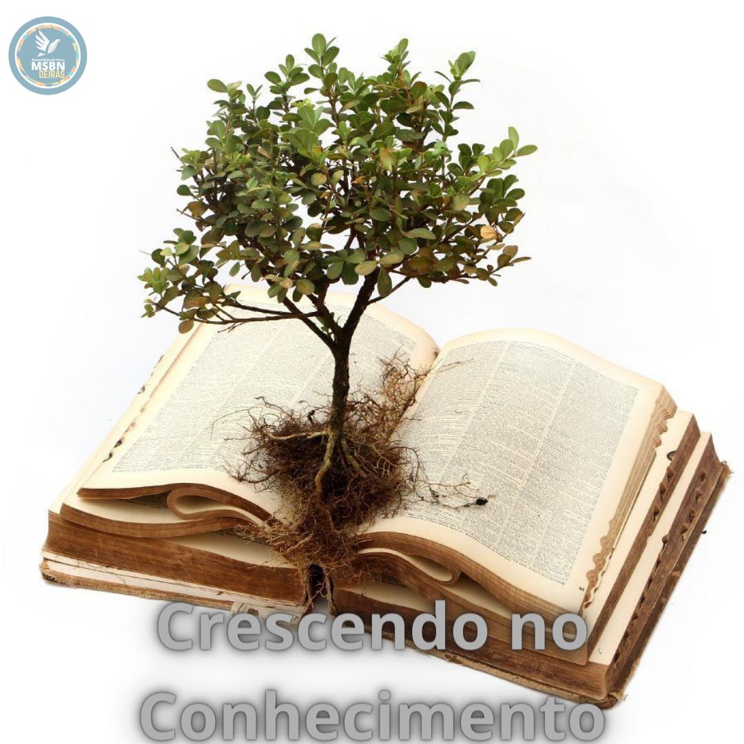 CRESCENDO NO CONHECIMENTO | Paulo Cesar Silva